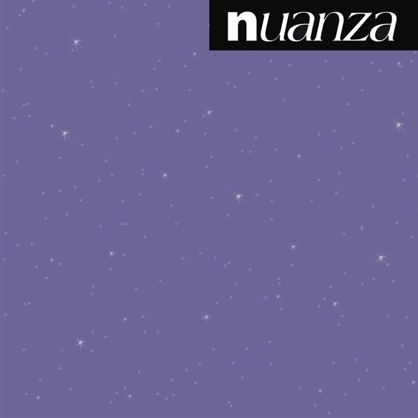 Peinture myrtille pailleté Nuanza 2l