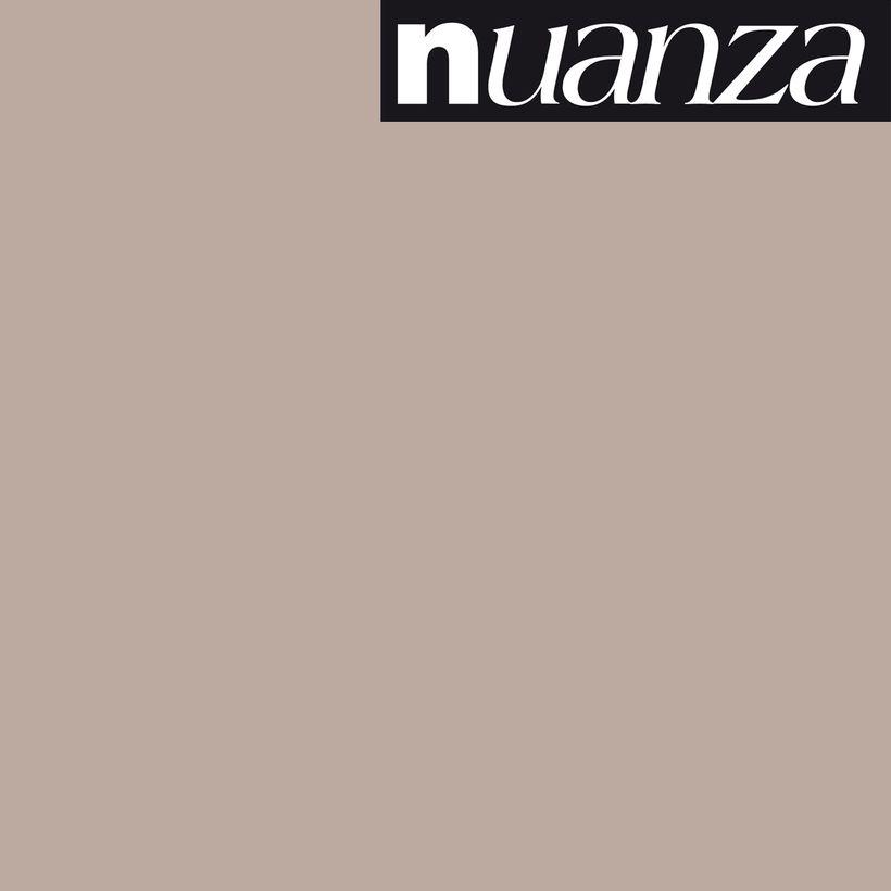 Peinture argile satin multisupports Nuanza 2.5l