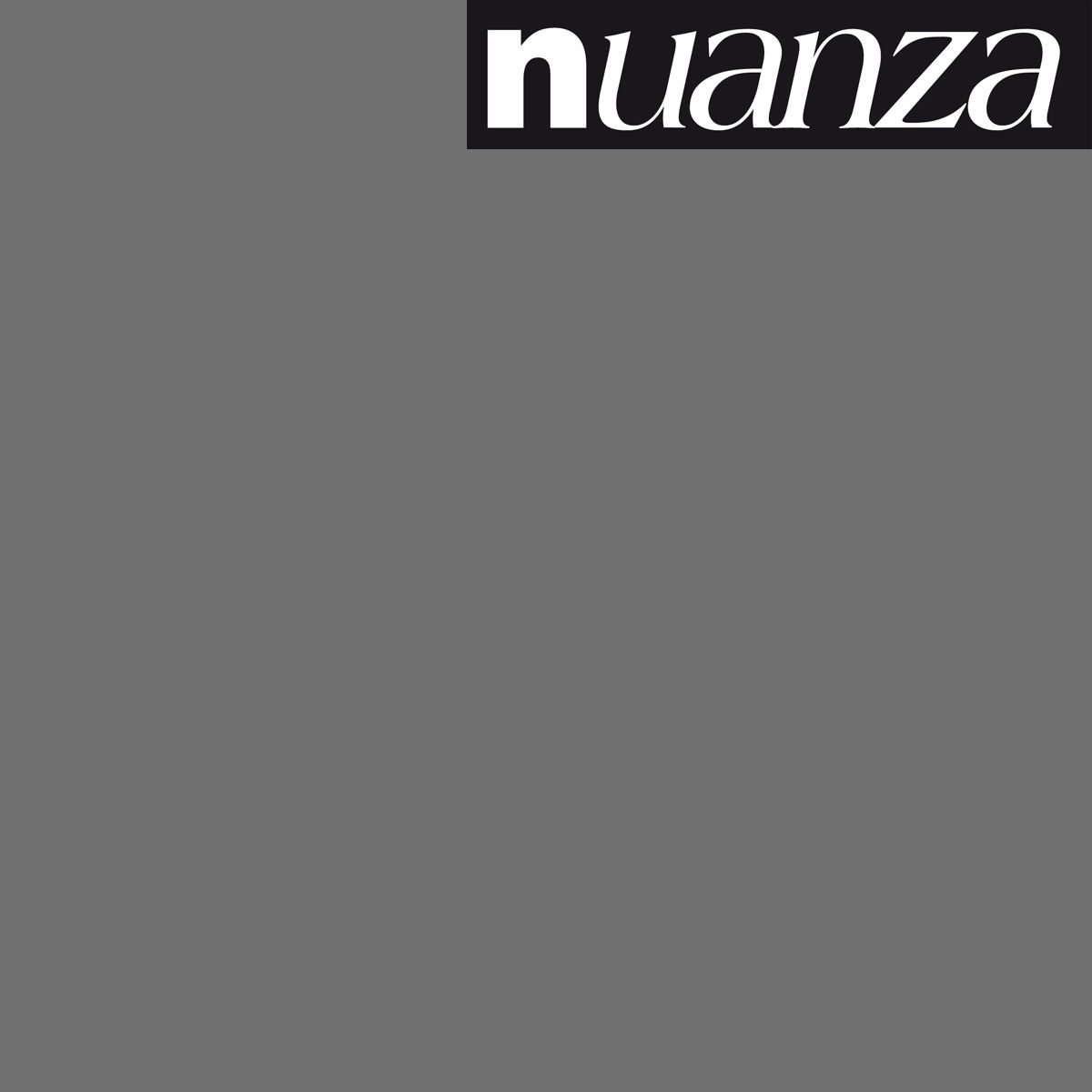 Peinture anthracite satin murs et boiseries Nuanza 0.5l