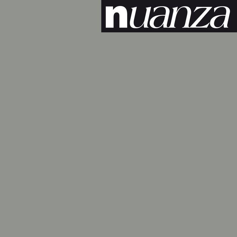 Peinture titane satin multisupports Nuanza 0.5l